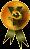 Kyofu Gold